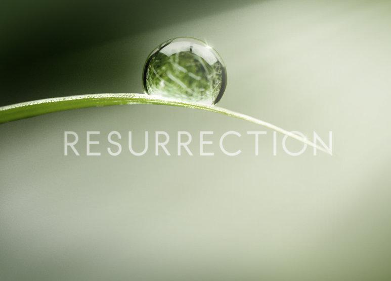 Постер для 1 сезона сериала Воскрешение